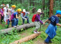 Международный детский лагерь Артек Карпаты Озерный