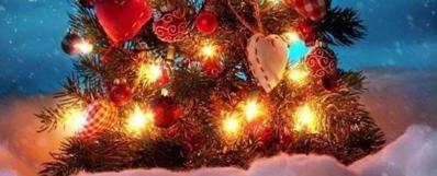 Новый год в Карпатах 2018« СКАЗКА ДЕТСТВА»